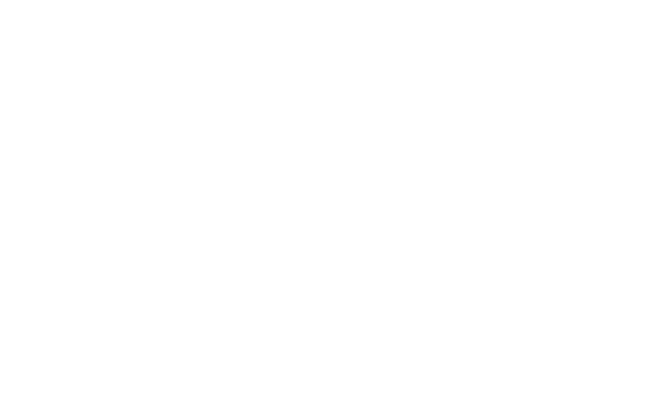 Shade Whitesel Dog Training